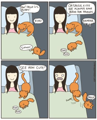 Cat Versus Human Ich Teile Gerne Aus Ein Comic Leben